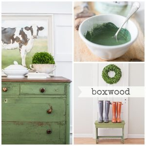 Boxwood - Miss Mustard Seed Milk Paint